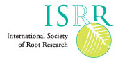Logo of the International Society of Root Research